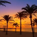 Donde alojarse Palma de Mallorca