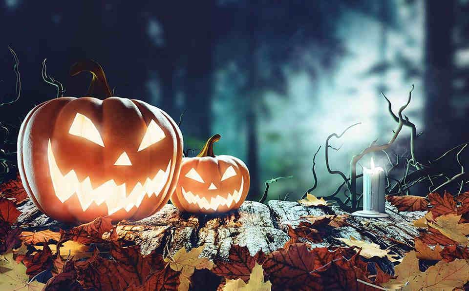 Citrouille d'Halloween Location Voitures Offres